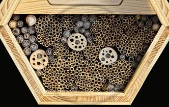 Nisthilfe für solitäre Wildbienen und Wespen. Nahezu alle für die Mauerbiene geeigneten Nistgänge sind bereits besetzt.