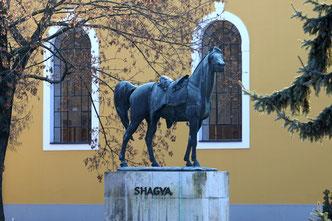Statue von Shagya db 1836 im Natiobnalgestüt Bábolna
