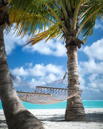 Sommer 2019 Sonne Strand Hängematte Palmen Sand Beach Auszeit Erholung und so.