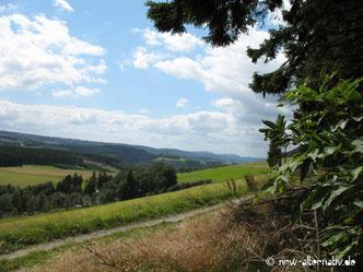 Ausblick ins Tal von einem Wanderweg in Winterberg