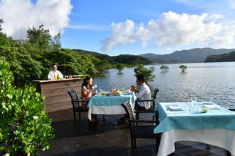 西表島 マングローブカフェ