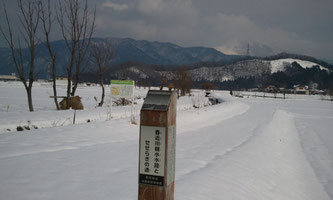 【滋賀県長浜市 製造業様】NEWVAN コンテナ20ft シルバー塗装 リピートでのお買い上げ!