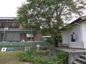 滋賀県米原市 保管 備蓄 防災倉庫 NEWVAN コンテナ20ft