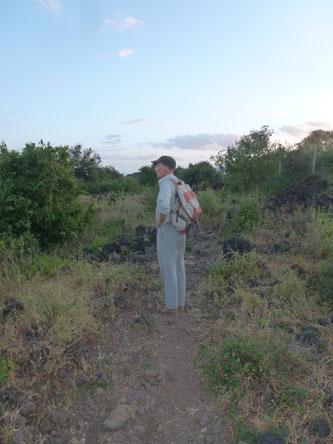 Steve hält  nach Elefanten Ausschau