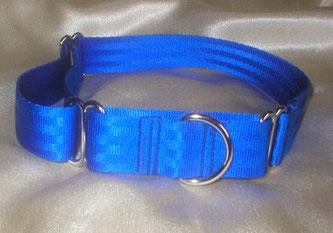 Martingale, Halsband, 2,5cm, Gurtband königsblau