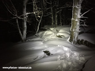 Pfälzer_Wald_Nachtwanderung_wandern_Schnee