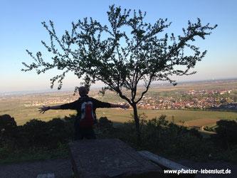 Wandern_Pfälzer Wald_Pfalz_Weinstraße_Rheinebene_Ausblick_Michelskapelle