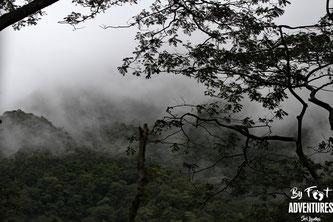 Knuckles Mountains, Sri Lanka, Wildlife, Conservation, Elephants, Safari, Leopard, Adventure, Lodge, Camp, Hike, Trekking, Hiking, Travelsrilanka, holiday, Elephant, Asian Elephant, Nationalpark, Guiding, Wildlife, Waterfall, Mountains