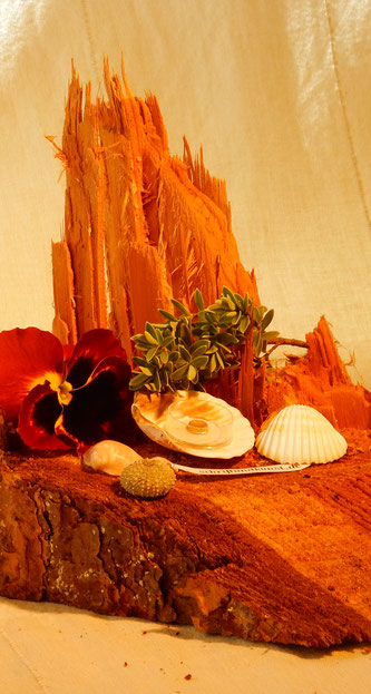 Muschelgold wurde früher in einer Muschel angeboten.