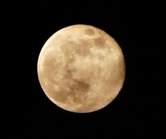 こんなにまん丸なお月様が見られるのかなぁ