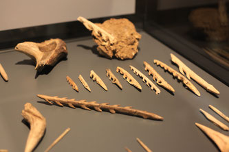 Archäologische Reise Höhlenmalerei