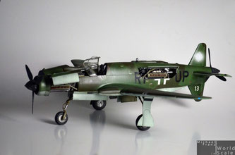 Dornier DO-335 - 1/32 by HK Models