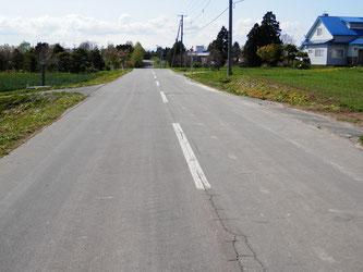 菜の花ウィーク中はこの道路は通行止めになります。