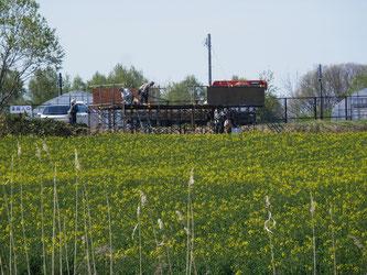 畑会場では見晴台の設営も始まりました。
