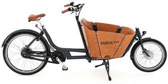 Babboe Mini Mountain Lasten e-Bike, Lastenfahrrad mit Elektromotor, e-Cargobike 2017
