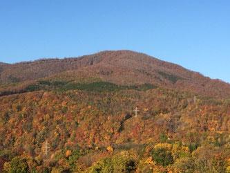 先週10月21日朝7時頃。小高倉山。なかなかの紅葉っぷりでした!