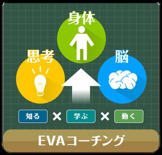 EVAコーチング イメージデザイン(Flyingdiscradio鈴木弘定氏による)