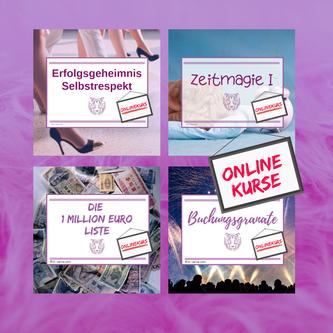 Onlinekurse und Selbstlernkurse für Frauen im Direktvertrieb und Network Marketing, die Geld verdienen und Erfolg haben wollen