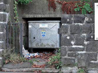 Littering vor dem Müllcontainer