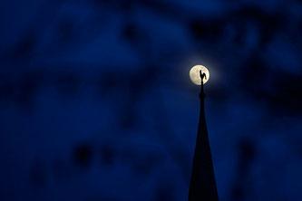 Der Hahn im Mond