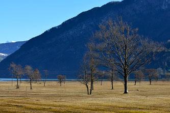 Landschaft im Winterschlaf