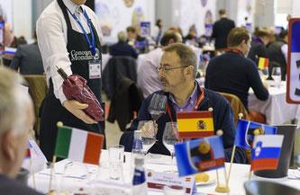 D.O.ルエダ、ブリュッセル国際ワインコンクールで45アイテムがメダル獲得 (www.vinetur.com)