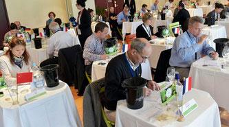 Concours Mondial du Sauvignon ソーヴィニヨンブラン世界コンクール (www.vinetur.com)