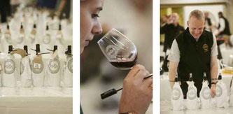 インターナショナル・ワイン・チャレンジ2016 (www.vinetur.com)