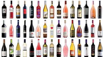 書籍《Los 100 mejores vinos por menos de 10€》(geoPlaneta社)(www.diariodegastronomia.com)