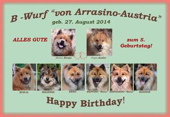 HAPPY BIRTHDAY für unsere B-Bärchen von Arrasino-Austria!