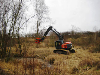"""Mithilfe eines hydraulischen Schneidwerks (""""Woodcracker"""") entfernt Baugeräteführer Dennis Bystrek die gewässernahen Gehölze."""