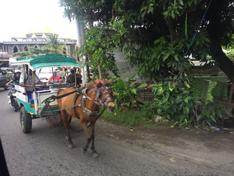 Cidomo, Lombok, Gili, Pferdekutsche