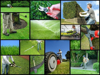 ludlows lawn care