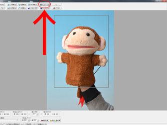 証明写真のトリミング方法の操作説明の写真6