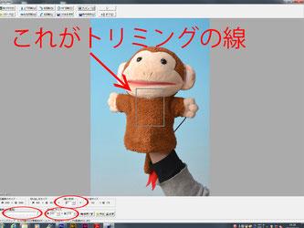 証明写真のトリミング方法の操作説明の写真4