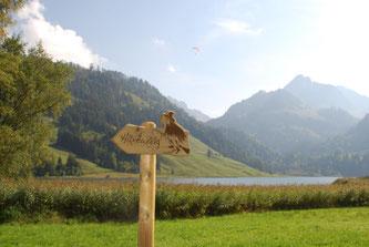 Bildquelle: schwarzsee.ch