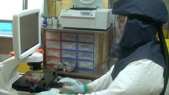 Arbeiten mit dem synthetischen Klon des neuen Coronavirus im Hochsicherheitslabor des Instituts für Virologie und Immunologie (IVI) der Universität Bern und des Bundesamts für Lebensmittelsicherheit (Bildquelle: Universität Bern)