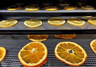 Werden die Früchte auf ein Gitter gelegt, werden sie durch den Ionenwind schneller und gleichmässiger getrocknet. Bild: Empa
