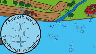 Abbauprodukte von Pestiziden belasten Grundwasser  (Bildquelle: Eawag – Das Wasserforschungsinstitut des ETH-Bereichs, Zürich)
