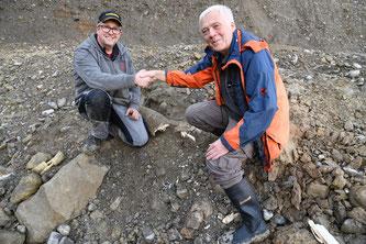 Die Freude über den fünften Eschenbacher Mammutzahn ist gross: Finder Stefan Bitterli und Ebbe Nielsen, stellvertretender Kantonsarchäologe (rechts im Bild).