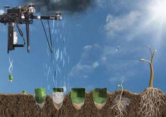 Die vom Unternehmen Flash Forest entwickelte Drohne schafft es, die Baumsamen zusammen mit Nährboden und Nährstoffen in den Boden zu schiessen