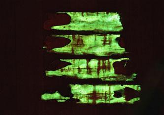 Grünes Licht: Der Hallimasch-Pilz durchdringt Holz und bringt es durch Biolumineszenz zum Leuchten. Bild: Empa