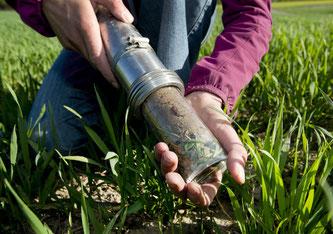 Foto: Agroscope, Gabriela Brändle