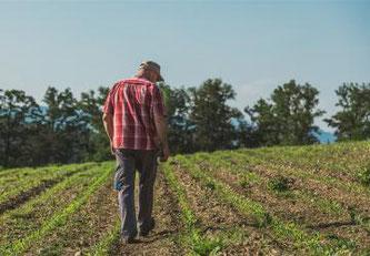Anlaufstelle für Landwirtschaftsbetriebe in Schwierigkeiten © Tous droits réservés - Grangeneuve, Institut agricole de l'Etat