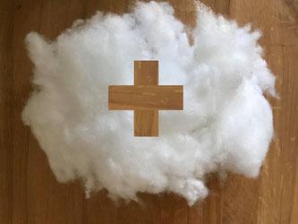 Der Einsatz von Clouds stellt einen wichtigen Beitrag dar (Foto: DMZ Mittelländische Zeitung)