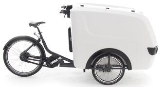 Babboe Lastenfahrrad mit Elektromotor Pro Trike-E 2020