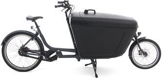 Babboe Lastenfahrrad mit Elektromotor Pro Bike-E 2020