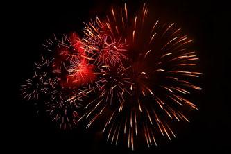 Silvester mit Katze feiern, Feuerwerk