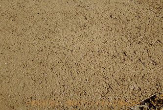 施工直後の表面(間伐材ウッドチップ舗装協会の作業写真3)