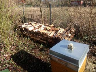 Nun haben auch die Bienen ein bisschen Holz vor der Hütte